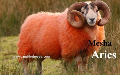Mesha – Aries