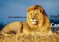 Singh – Leo