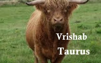 Vrishab – Taurus